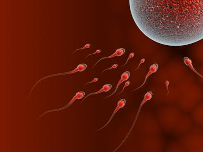Fruchtbarkeit von Männern sinkt